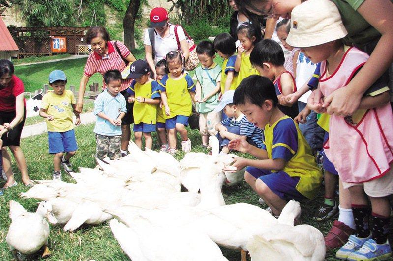 ▲近距離與小動物們互動。  圖:台灣休閒農業發展協會/提供