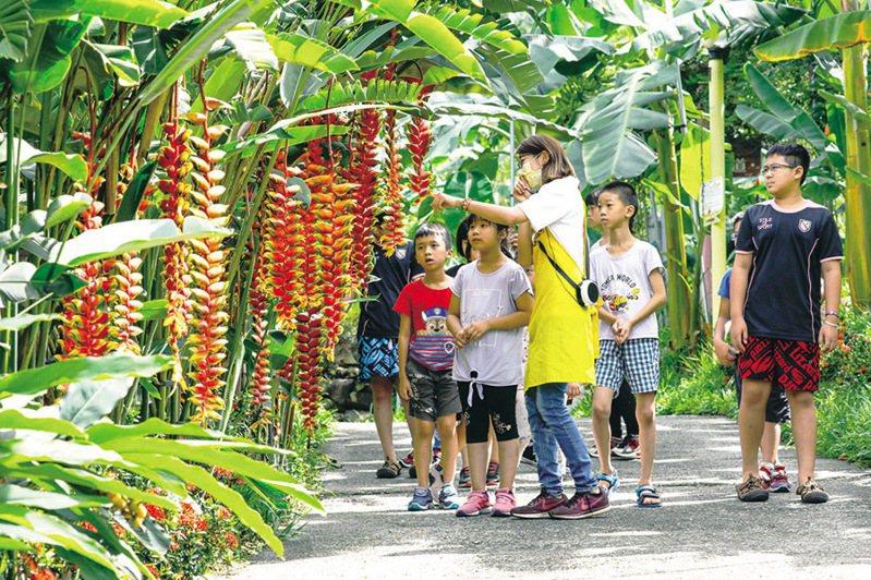 ▲進入天然教室認識各種果樹。  圖:台灣休閒農業發展協會/提供