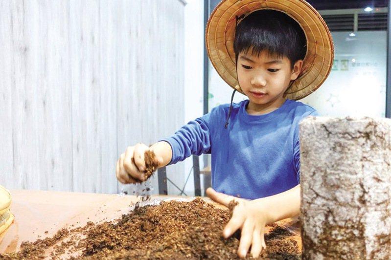 ▲動手做體驗綠能環保。  圖:台灣休閒農業發展協會/提供