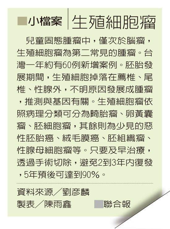 小檔案╱生殖細胞瘤 資料來源╱劉彥麟 製表╱陳雨鑫