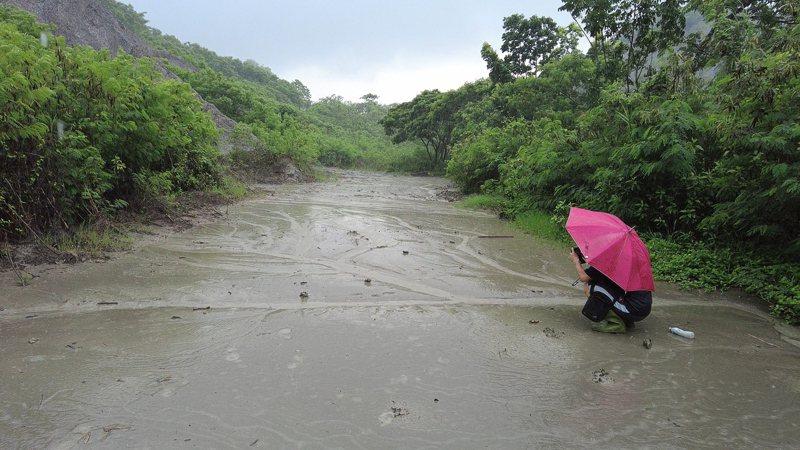 台南社大志工上月底大雨,到龍崎牛埔惡地觀察豪大雨對年岩惡地的影響。圖/台南社大提供