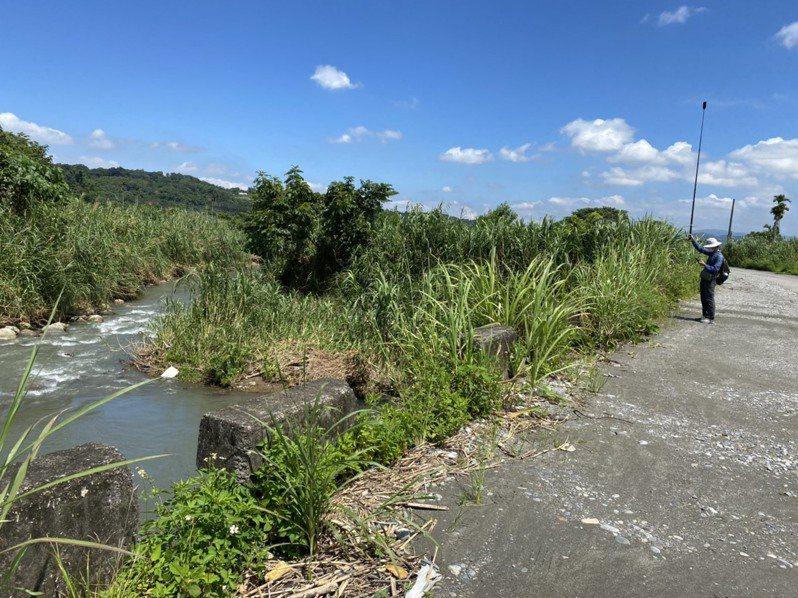 台灣石虎保育協會理事王豫煌帶領本報記者實地走訪大甲溪東勢段堤防十三工區,指該處原本要施作400公尺長的堤防,在部分農民反對下,又縮減至150公尺。記者陳雅玲/攝影