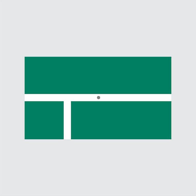 「黃豆泥」畫東奧「麟洋配」金牌決定畫面,被稱為新時代國旗。圖/黃豆泥提供