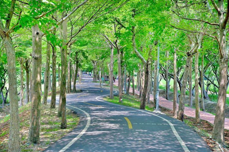 圖/儂儂提供 source:臺中觀光旅遊網