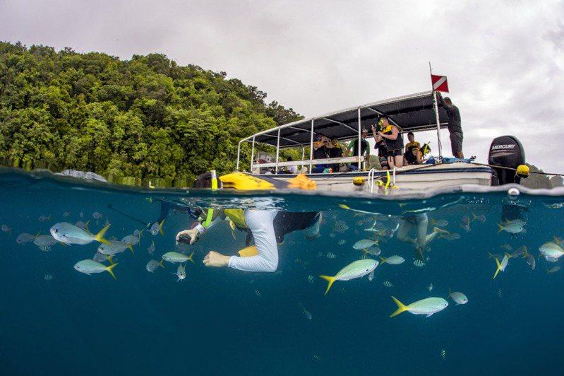 帛琉被譽為上帝的水族箱,深潛或浮潛各有不同美景。圖/KKday提供