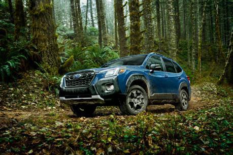 開啟玩泥巴模式 Subaru北美發表Forester Wilderness