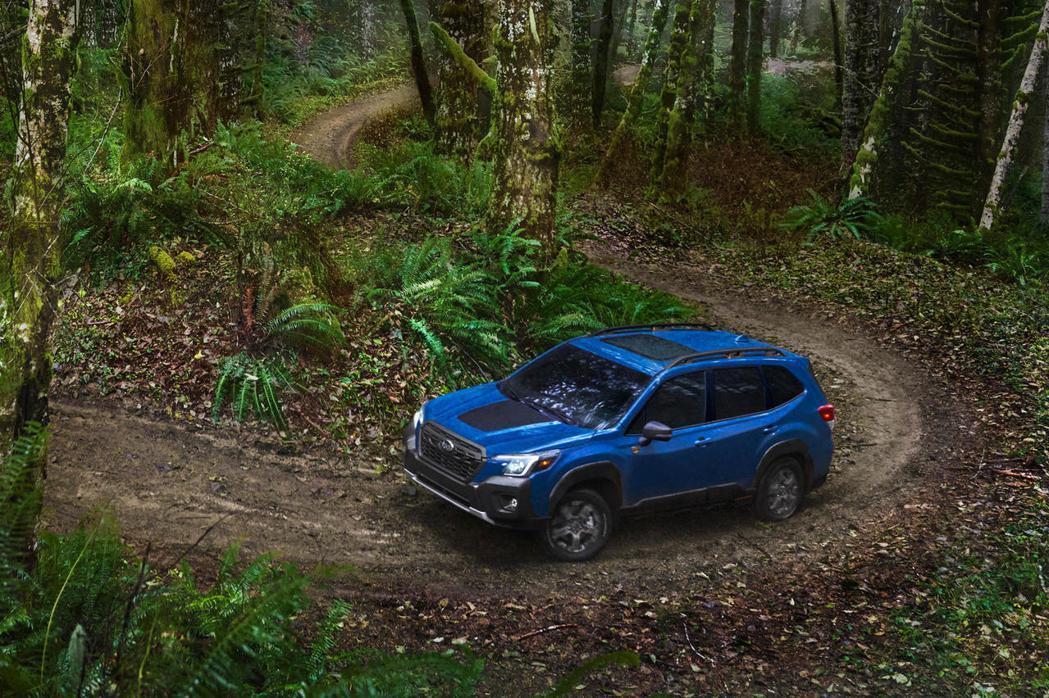Forester Wilderness更有本錢穿越山林之間。 圖/SUBARU提...