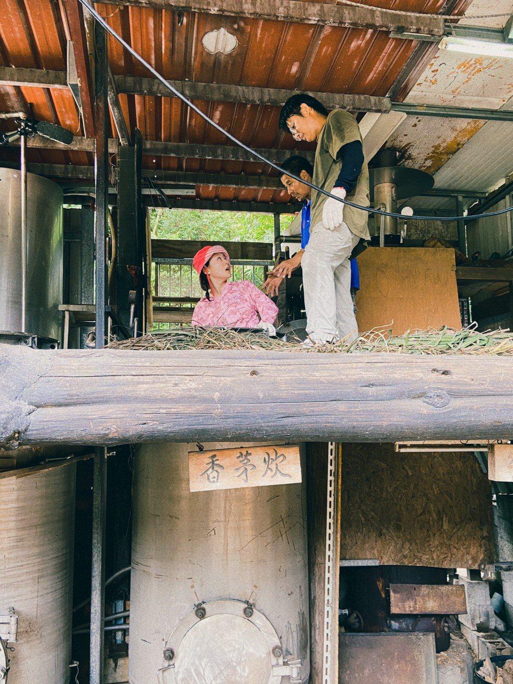 楊小黎在蒸餾爐內體驗煉油作業。圖/三立提供