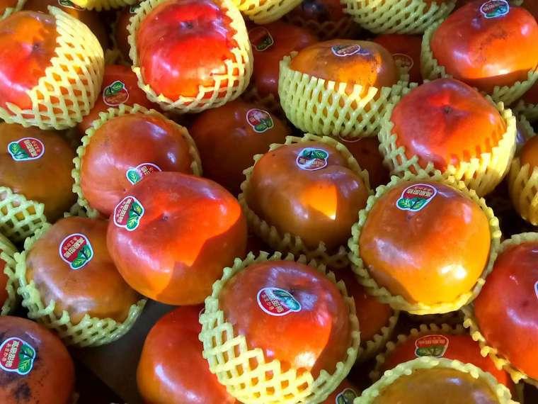 秋天金黃橘亮的柿子,是家人愛不釋手的食物,去年燉柿餅蓮藕南瓜湯,擄獲全家人的胃。...