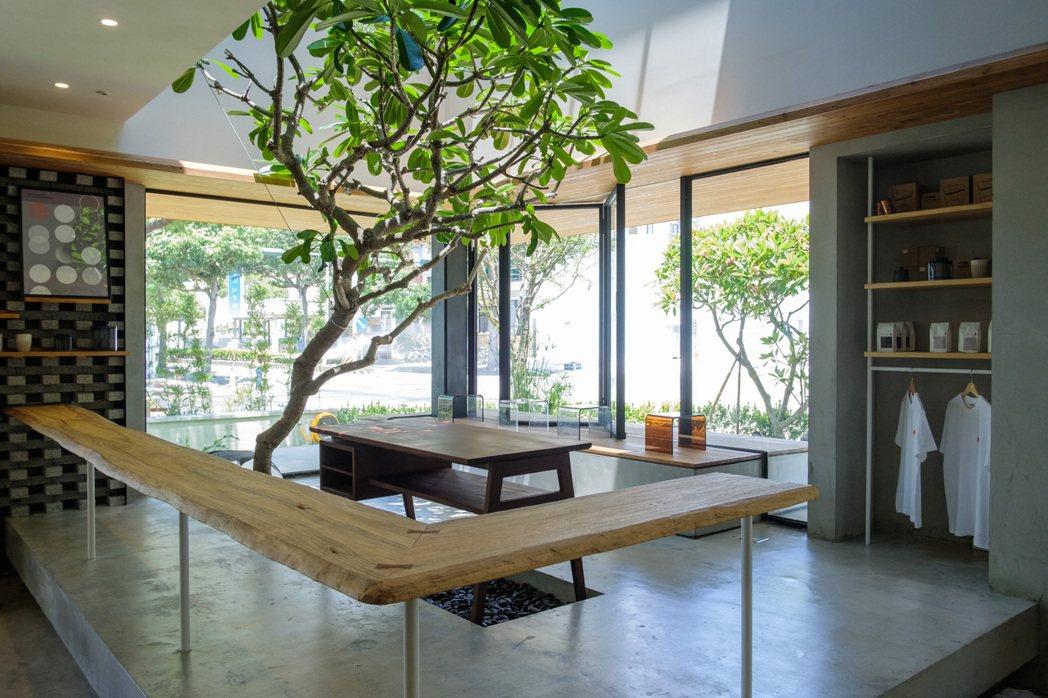 黃思喬的爸爸媽媽親手為日遲種植園藝樹木,為空間注入輕盈溫暖的氣息。 圖/沈昱嘉攝...
