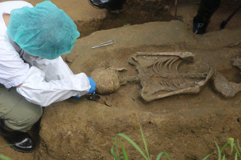 嘉義市鐵路高架化工程在「台斗坑遺址」範圍內挖到遺骸及文物,今將2遺骸出土,將會於現場把泥土與骨頭分離,再帶回調查。記者林伯驊/攝影
