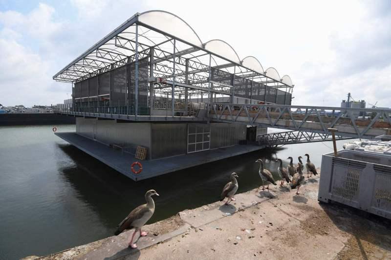 荷蘭地勢低窪、土地稀少且面臨氣候變遷威脅,以玻璃和鋼材搭建的三層漂浮農場也許是解決之道。(法新社)
