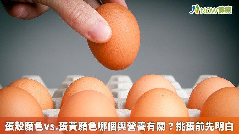 ▲台北市營養師公會居家照護營養師程涵宇表示,蛋黃顏色深淺不同,能攝取到營養素會有...