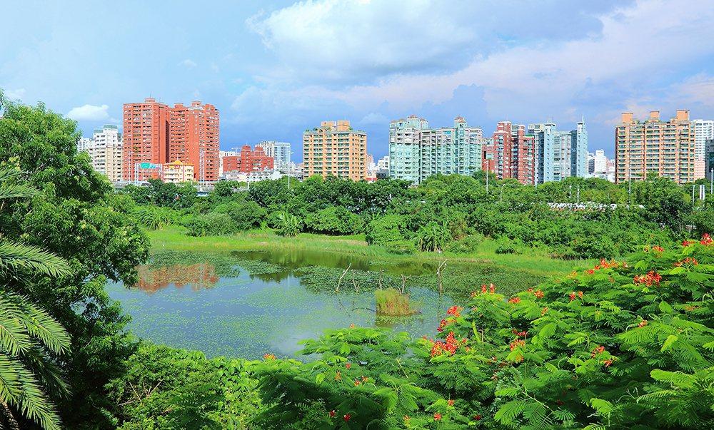 園區內設置深淺不同的水池,種植菱角、睡蓮等浮葉植物,以還歸自然、訴諸生態的自然工...