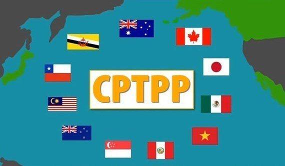 中經院研究報告指台灣應優先爭取加入跨太平洋夥伴全面進步協定(CPTPP),大陸國台辦及外交部均對此反對。(圖/取自搜狐)