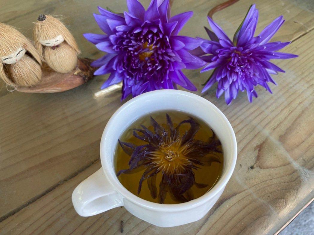 蓮花曬乾,在杯裡沖入熱水,展開就是一幅圖畫。圖/于國華提供