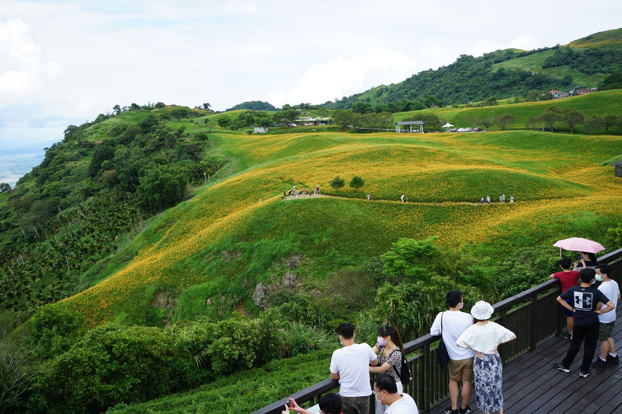 花蓮縣六十石山的觀景亭視野極佳,是賞景好地點。 圖/王燕華 攝影
