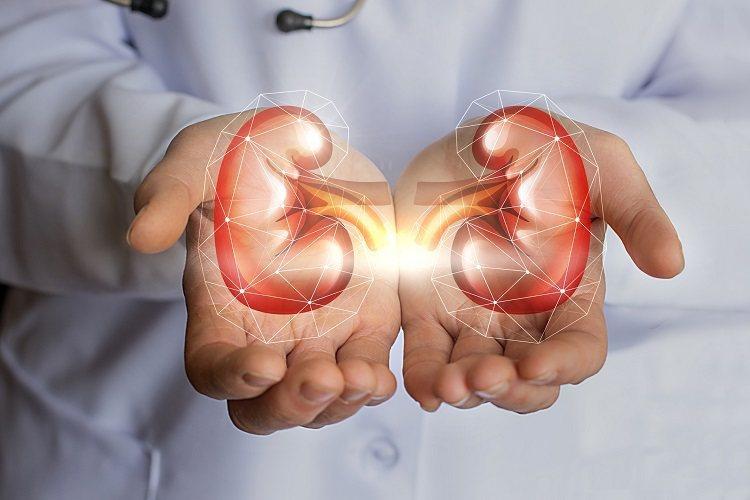 腎衰竭=喪失腎臟功能要洗腎?圖/健康醫療網