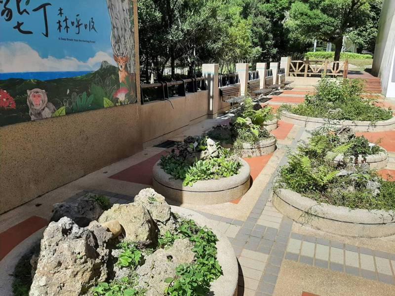 屏東林區管理處即日起至明年1月31日進行遊客中心周遭與濕地植物區整體景觀改善工程,考量遊客安全,封閉遊客中心後方連接濕地植物區部分區域。圖/屏東林管處提供