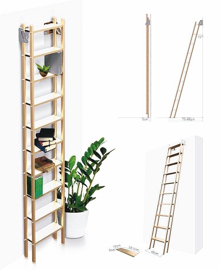 佛司特多功能爬梯具備多功能運用。佛司特/提供