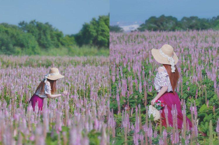 療癒粉紫色搭配深色系紗裙凸顯出浪漫氛圍。圖/IG@3more_hi4授權