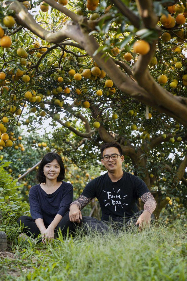 詹凱麟與秦子媛6年前返鄉台中市東勢區種植柑橘,創立「猛男農夫」品牌打響名號。圖/秦子媛提供