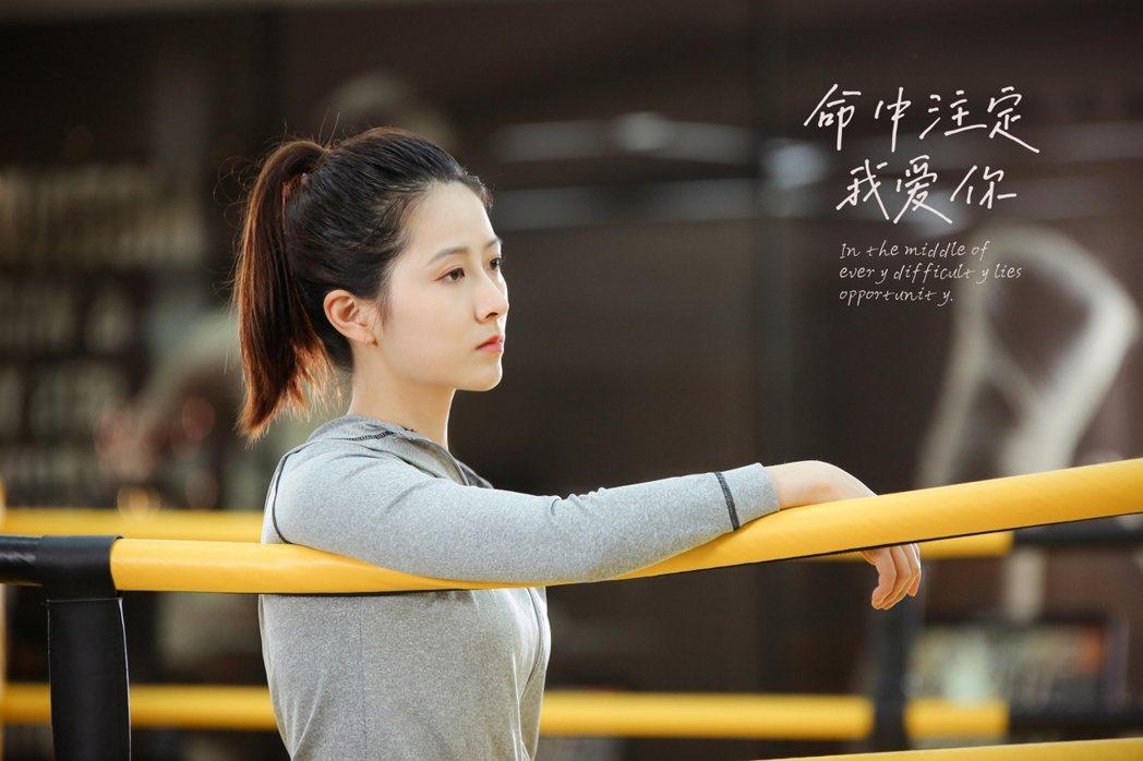 胡成韻在「命中注定我愛你」中演出高冷女總裁。圖/海王天璽提供