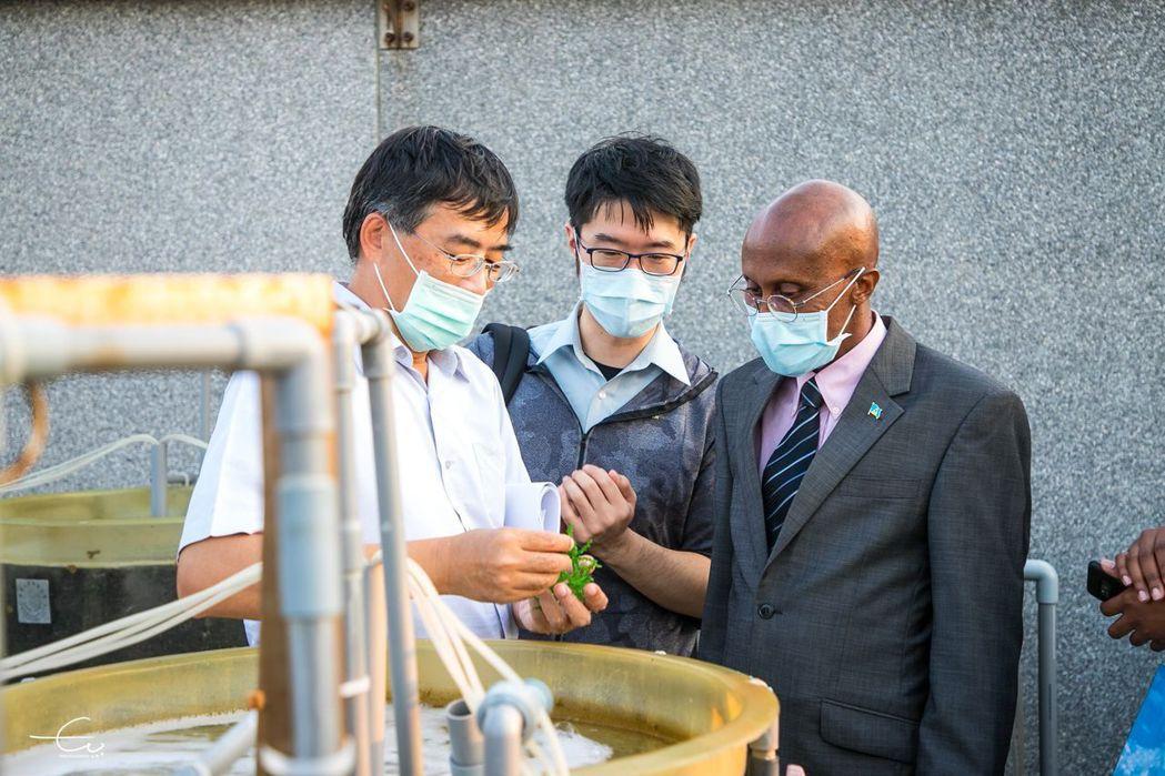 張睿昇助理研究員帶領大使實際參訪藻類培養現場。 海大/提供
