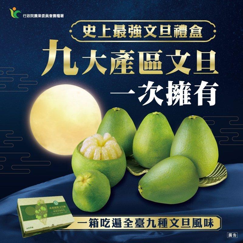 台灣文旦大聯盟今年推出9大產區文旦禮盒。圖/孫慈敏提供