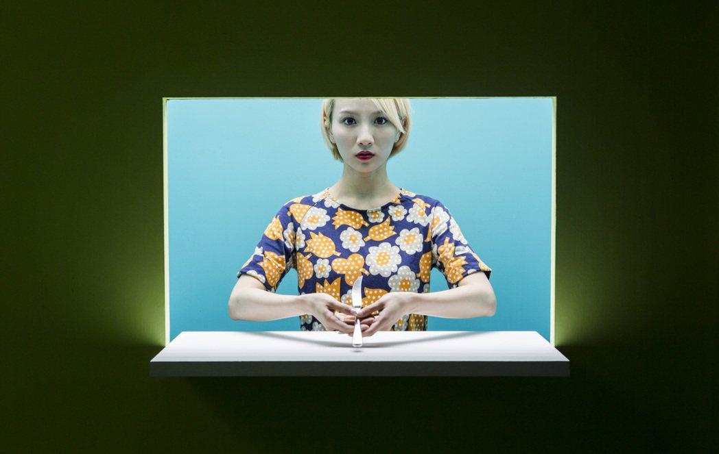 何采柔在作品「半透明的」(Semi-transparent,2013)中,以包覆...