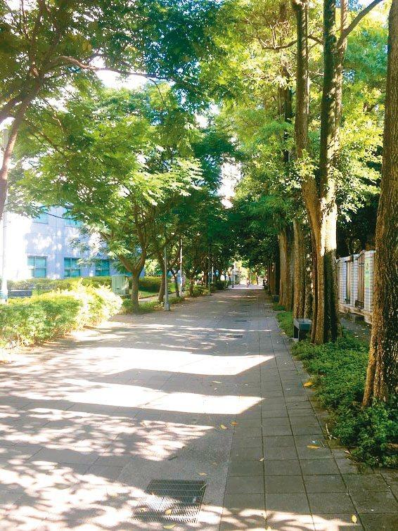 晨間,秋老虎般的烈日尚未發威,沿著校園圍牆的綠色廊道散步,迎面而來的是涼風徐徐,...