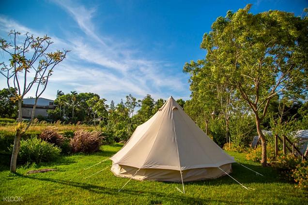 米白色鐘型帳的黃金梯田露營地。KLOOK/提供