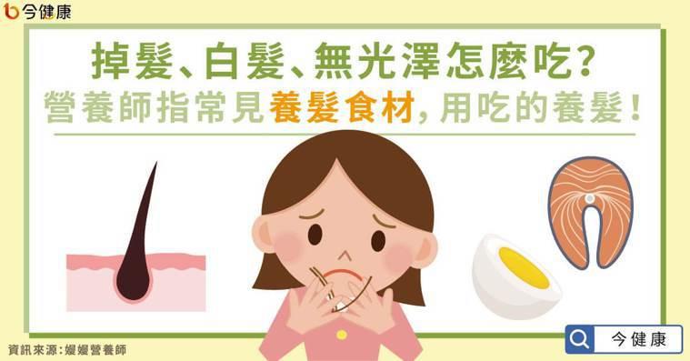 掉髮、白髮、無光澤怎麼吃?營養師指常見養髮食材,用吃的保養! 圖/今健康提供
