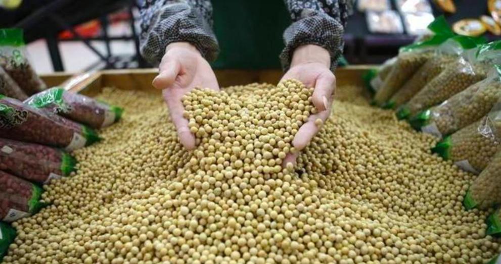 美國農業部周三宣布有兩筆大豆出口訂單被取消,其中13.2萬噸來自大陸。路透