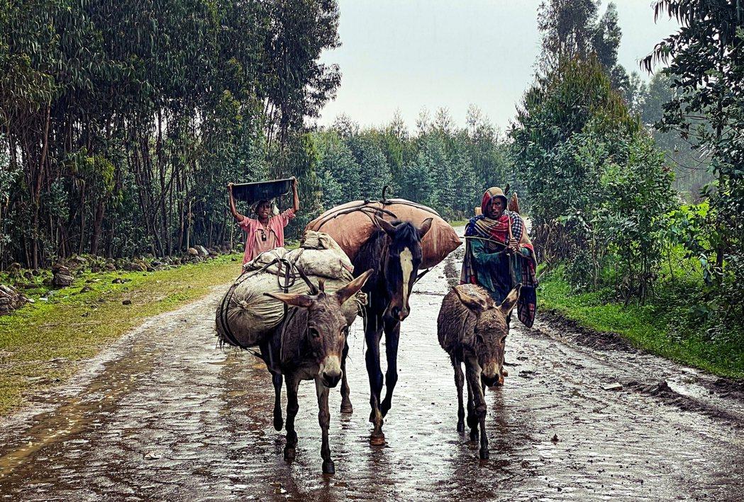 圖為逃離戰亂,帶著全副身家、冒雨離開錢納村莊的當地人。 圖/美聯社