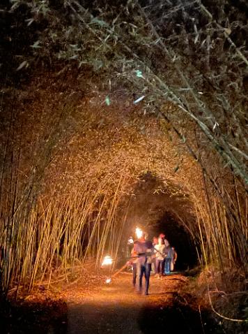茶山部落體驗,4、5月有多個梯次開玩。 圖/莊祖銘 攝影