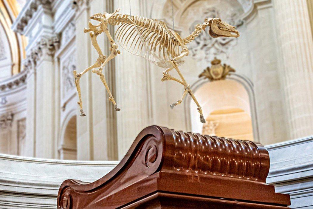 今年5月5日是拿破崙逝世200週年紀念日,拿波崙生前的愛馬馬倫戈(Marengo...