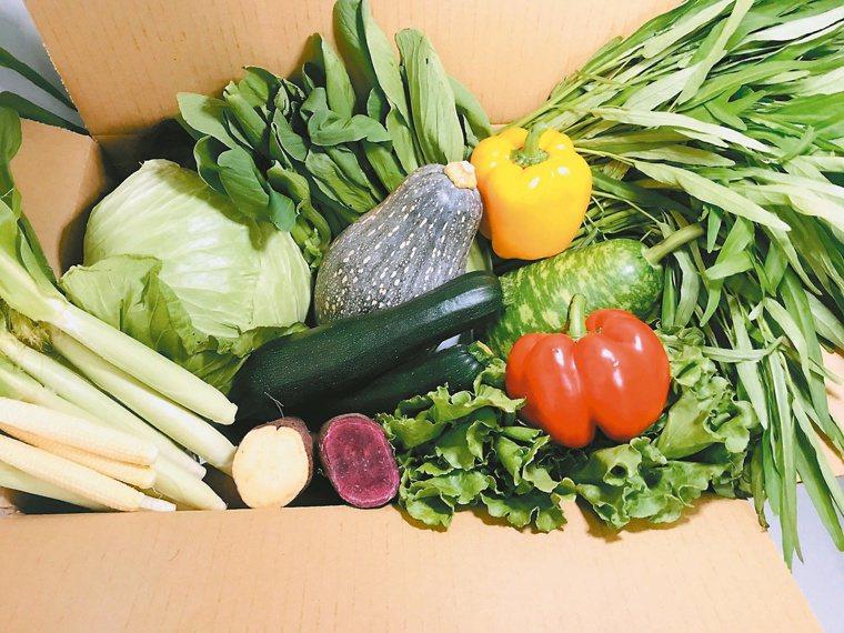 「蔬菜箱」宅配已成風潮。記者蔡維斌/攝影