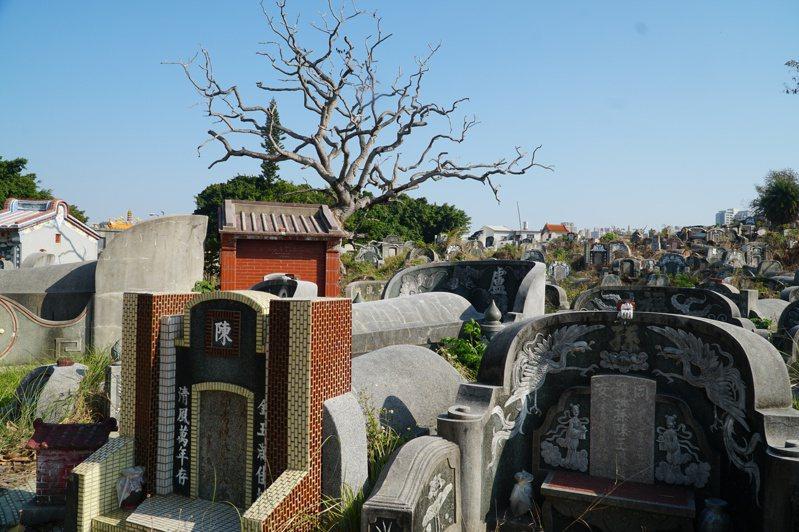 安平「貴雅山」公墓。(圖/聯經出版提供)