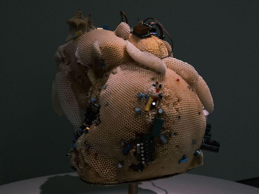 陳妍伊的〈楠西的維納斯〉作品。   南美館/提供