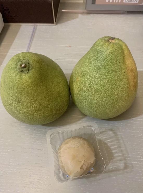 有居隔的母女抱怨,因為旅館裡沒湯匙也沒刀子,還不知怎麼要剝柚子。圖/讀者提供