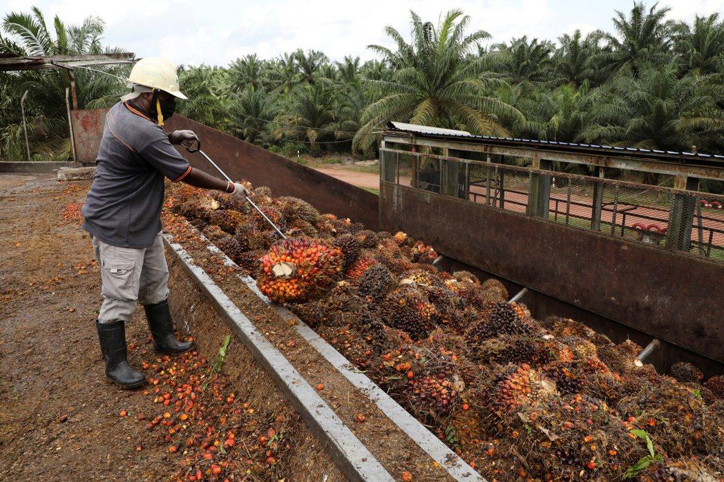 東南亞疫情爆發,推升大宗商品價格。 (路透)