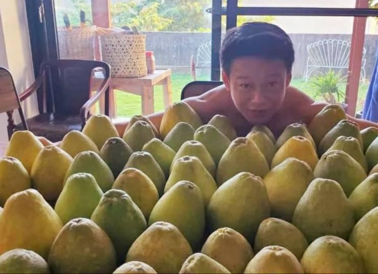 中秋節前夕,李康生忙將自家院中的柚子摘下,分送「山中森林」劇組人員。圖/禾力文創