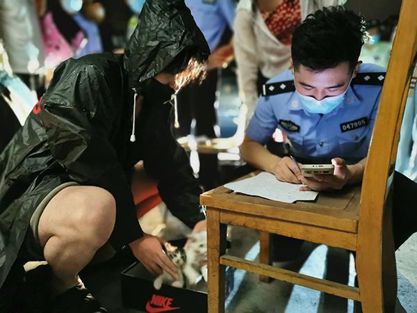 上海街頭驚現上百盒「寵物盲盒」被遺棄路邊,警方介入調查。圖源:新民晚報