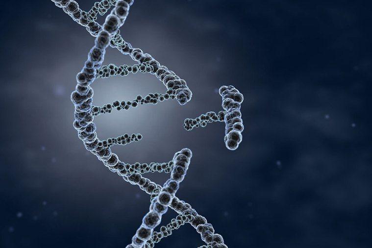 儘管人類和線蟲的細胞數量、器官複雜性,以及身體部位的差異都很大,但是人類和線蟲基...