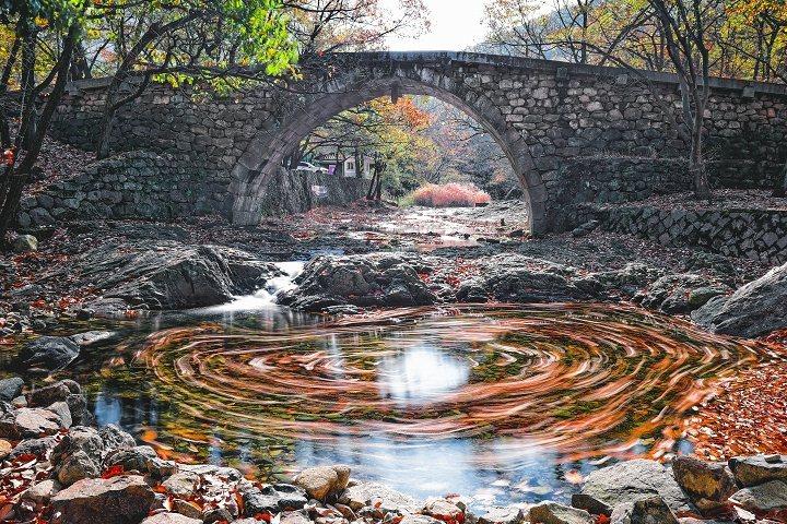 韓國麗水興國寺一年四季皆美。 圖:韓國-麗水市/提供