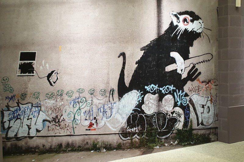 老鼠是班克斯塗鴉作品中最常出現的角色。記者陳宛茜/攝影