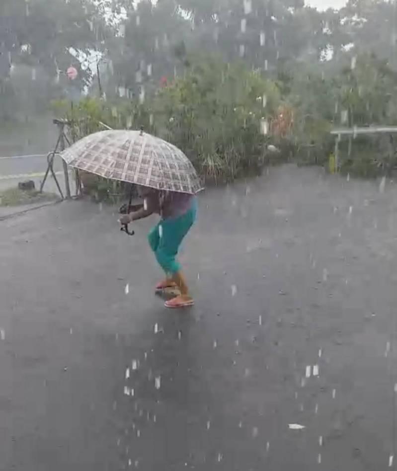 台南東山山區今下午下起冰雹,民眾撐傘開心撿拾。圖/讀者提供