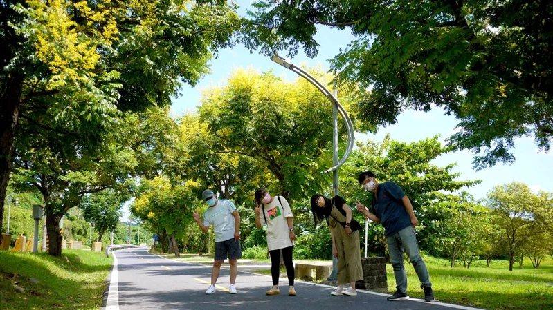綠意盎然的新北河濱自行車道換上秋季限定的金黃衣裝。  圖/新北市水利局提供
