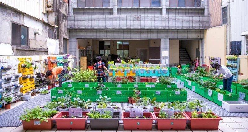 青銀協力將台南市兌悅里活動中心打造成都市農場。 圖/南市中西區公所提供